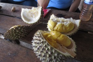 """Eat all you can"" durian buffet"