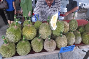 Musang King is the best durian variety in the opinion of some