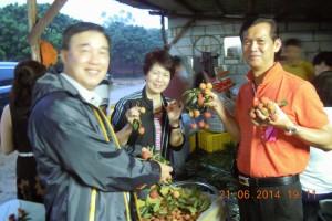 141010_DongguanLychee(5)